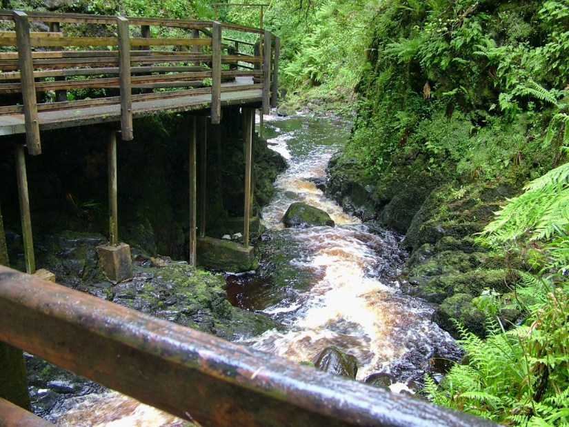 glenariff river, glenariff forest park, northern ireland