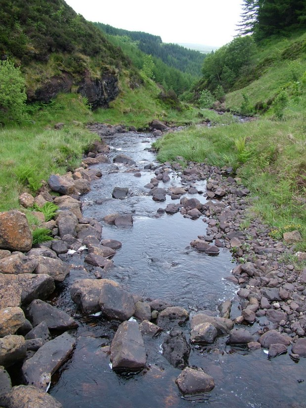 headwaters of the inver river, glenariff forest park, northern ireland