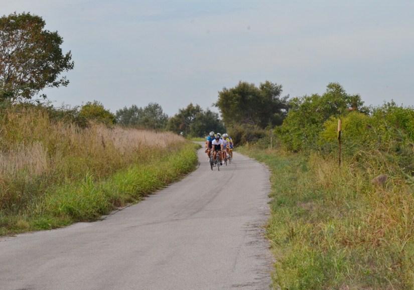 cyclists, parco regionale veneto del delta del po, po river delta, italy