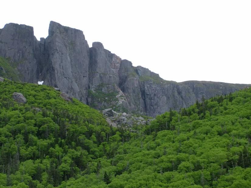 forested slopes, western brook pond, gros morne national park, newfoundland, canada
