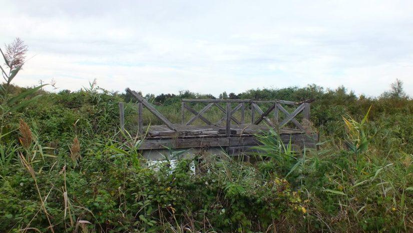 a bridge, oasi di ca' mello, oasis of ca' mello, parco regionale veneto del delta del po, po river delta, italy