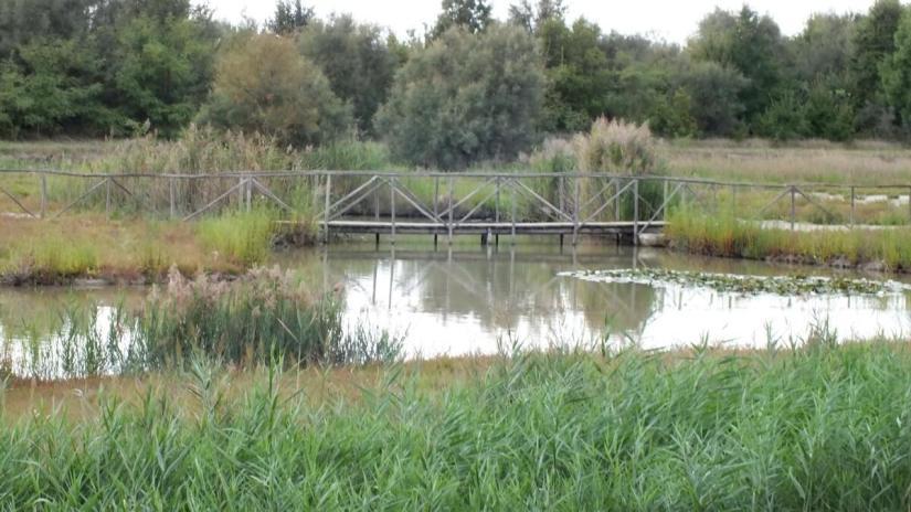 oasi di ca' mello, oasis of ca' mello, parco regionale veneto del delta del po, po river delta, italy