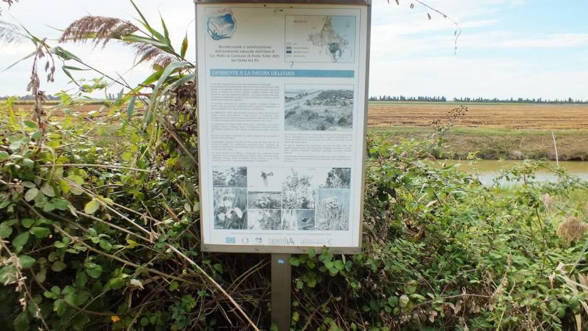 an interpretive sign, oasi di ca' mello, oasis of ca' mello, parco regionale veneto del delta del po, po river delta, italy