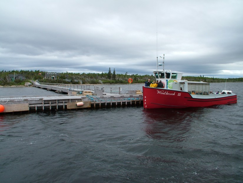 tour boat at the dock, western brook pond, gros morne national park, newfoundland, canada