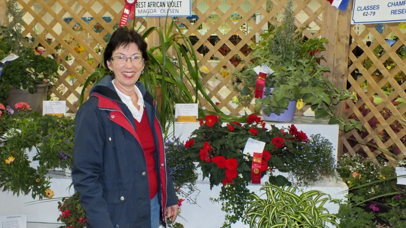 a winner in the horticultural competition, markham fair, markham, ontario, 2013