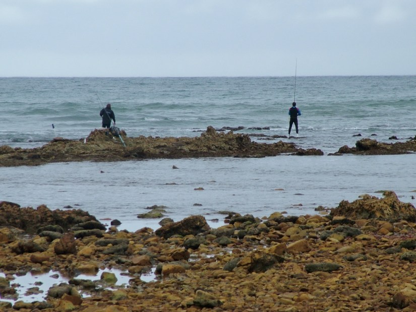 fishermen, indian ocean, port elizabeth, south africa