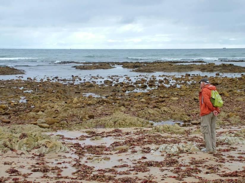 bob on the beach, indian ocean, port elizabeth, south africa