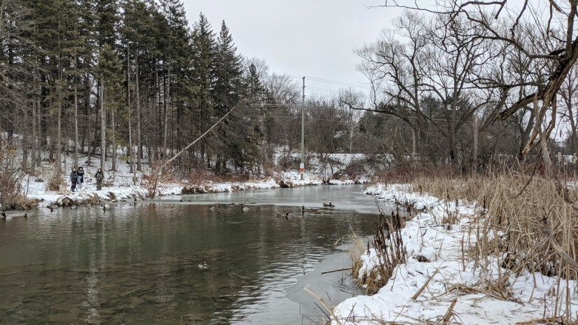 east holland river, fairy lake park, newmarket, ontario