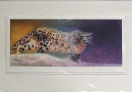 angela-gaugham-snow-leopard