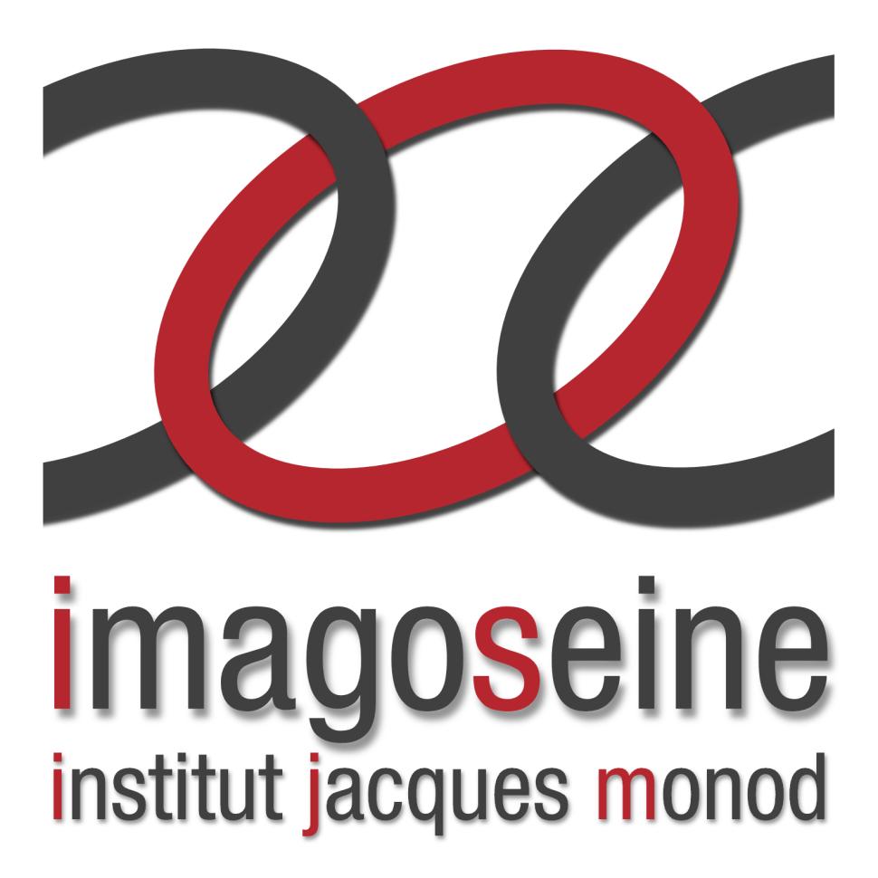logo_ImagoSeine_carré-PNG