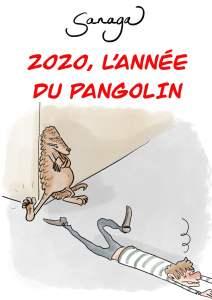 2020, l'année du Pangolin, par Sanaga