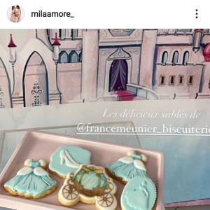 France Meunier Biscuiterie