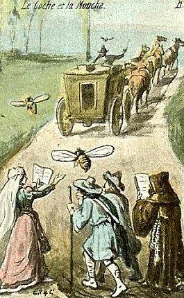 La Mouche Et Le Coche : mouche, coche, Proverbe,, Expression, Populaire, C'est, Mouche, Coche., Origine,, Signification