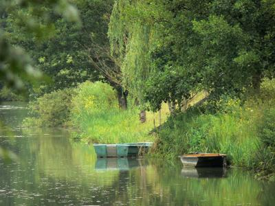 La Venise Verte Du Marais Poitevin Guide Tourisme Amp Vacances