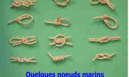 Quel nœud pour  fixer son palan sur le mat?