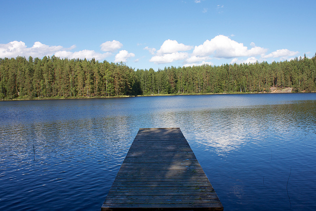 View of lake at Repovesi