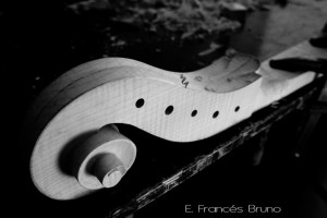 Volute cello piccolo amati eduardo frances bruno luthier