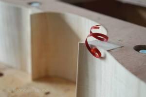 bloodwood viol eduardo frances bruno luthier