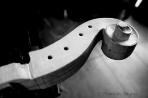 gasparo da salo viola volute eduardo frances bruno luthier