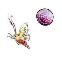 mothcell
