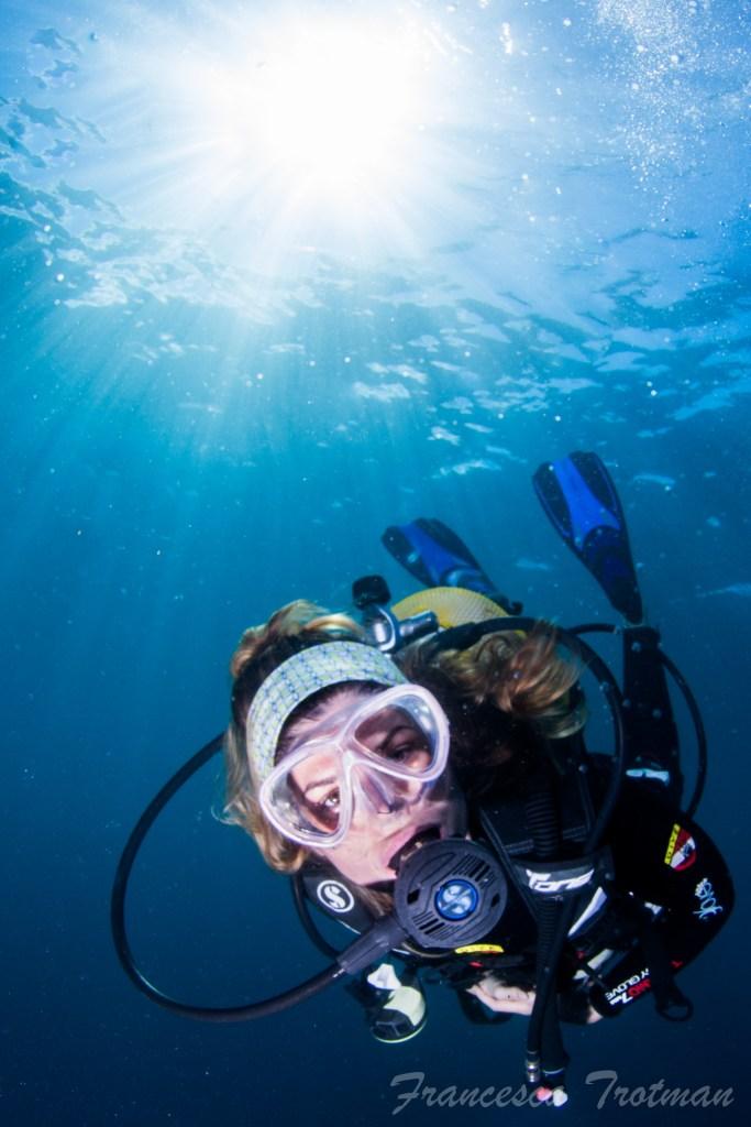 Pippa Enjoying Her Dive