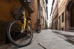 Lucca02