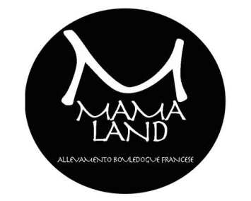 logo-mamaland-copywriter