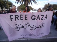 Codepink, WSF 2013, Medea Benjamin on right; Freedom for Gaza, WSF 2013, photo by Frances Hasso