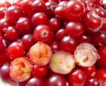 anti aging cranberry seed oil