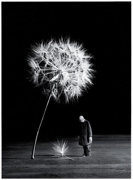 Photographie Noir Et Blanc : photographie, blanc, D'Arles, Pourquoi, Blanc, Intéresse-t-il, Encore, Photographes