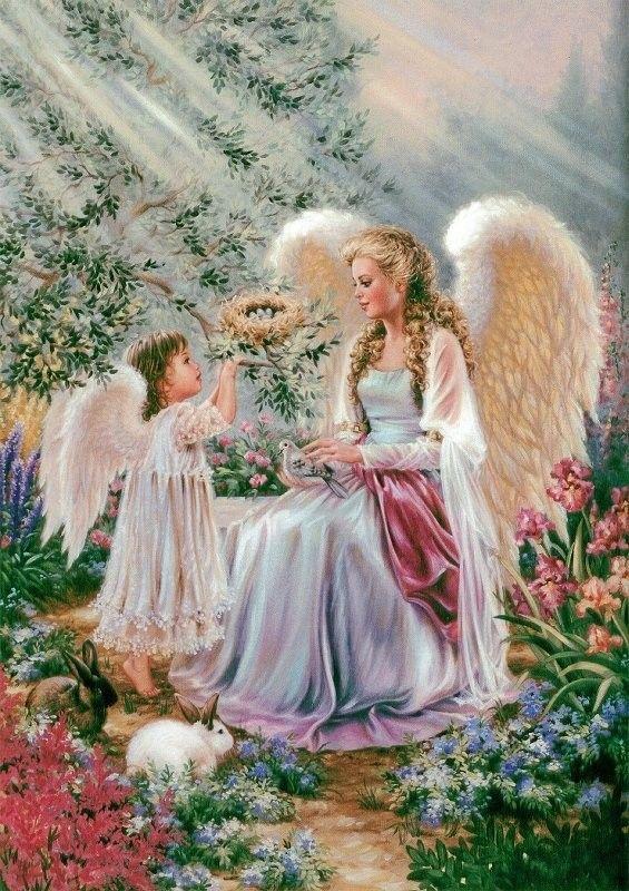Michel Pépé Le Coeur Des Anges : michel, pépé, coeur, anges, Anges, Citations, Images