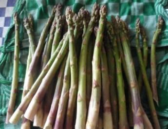 Groene-aspergetaart-met-bacon-en-kruiden-7