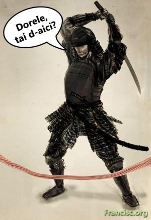 ninja-sabie