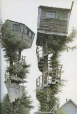 treehouses_peter_nelson_twins_625x927