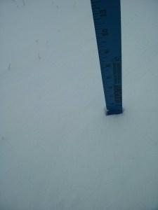 This snowstorm wasn't yardstick-worthy.