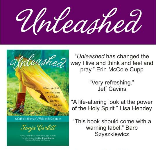 Unleashed warning label graphic for Bible Study with my blurb