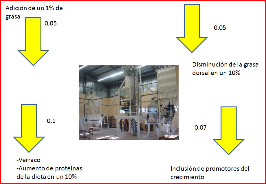 Indice de conversión III (2/3)