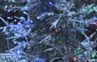 Słowo stało się Ciałem – Daję Słowo 25 XII 2017: Narodzenie Pańskie