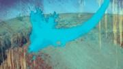 Dzień 15 – Projekt Kapucyński – spieczona ziemia