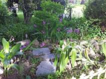 Questo giardino - 18