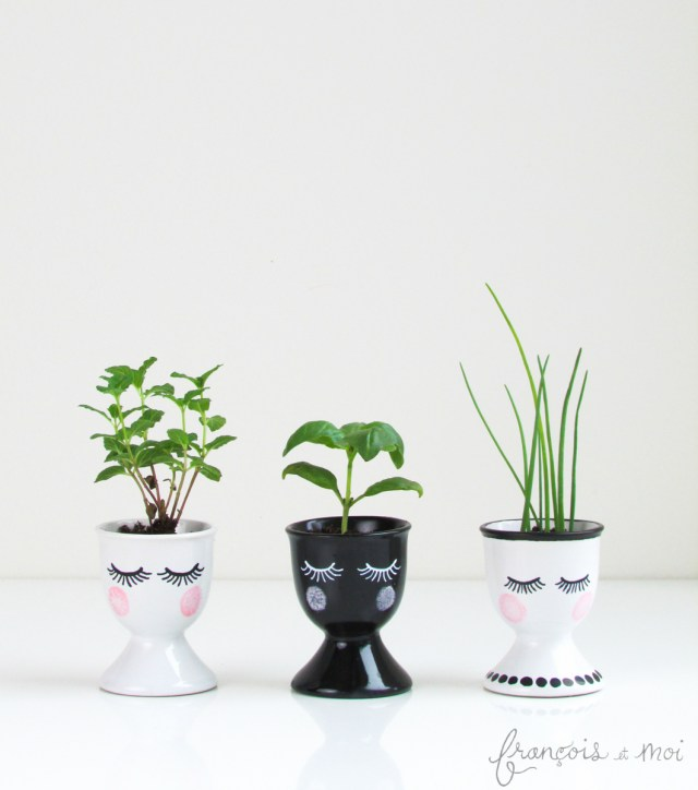 Top DIY Projects of 2015: Pretty Face Seedling Starters | Francois et Moi