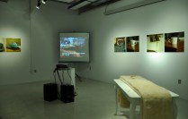 Francophone Hybride (installation view #1) Video projection, sound, found objects, resin, laserjet photographic prints