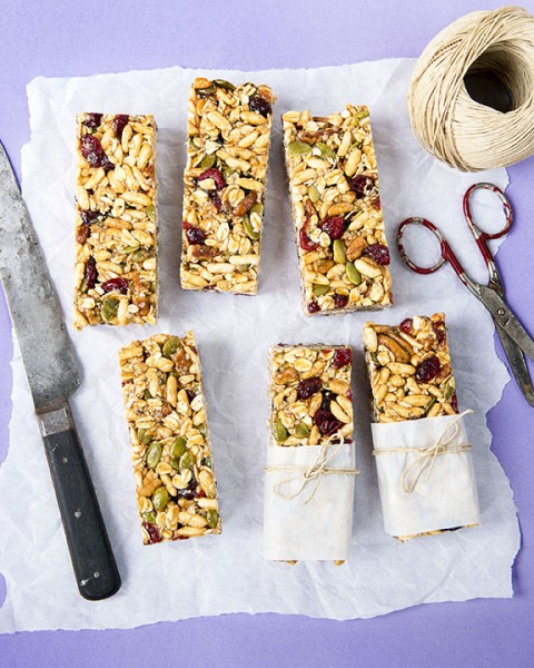 Snackworthy Cereal Bars from DIY Vegan by Nicole Axworthy and Lisa Pitman