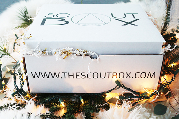 scoutboxchristmas3