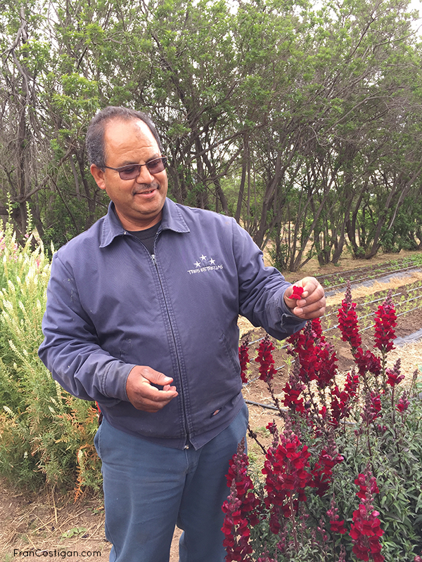 Master Gardener Salvatore and edible hibiscus for garnish