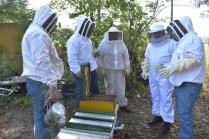 SRU-046-2018.-Gobierno del Estado retoma el areteo de colmenas como una medida de ordenamiento (2)