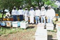SRU-046-2018.-Gobierno del Estado retoma el areteo de colmenas como una medida de ordenamiento (3)