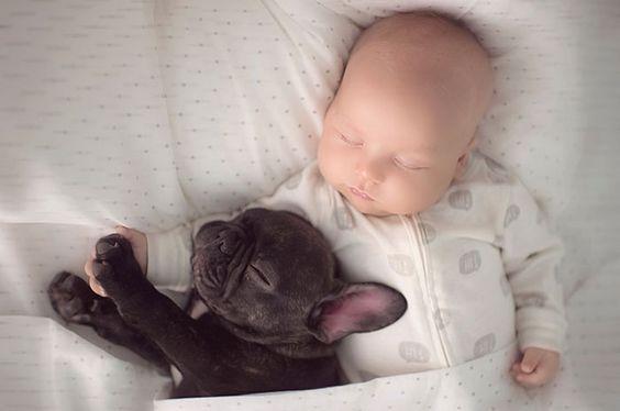 Spavanje sa psom u krevetu