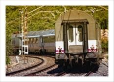 tren-2-p (1)