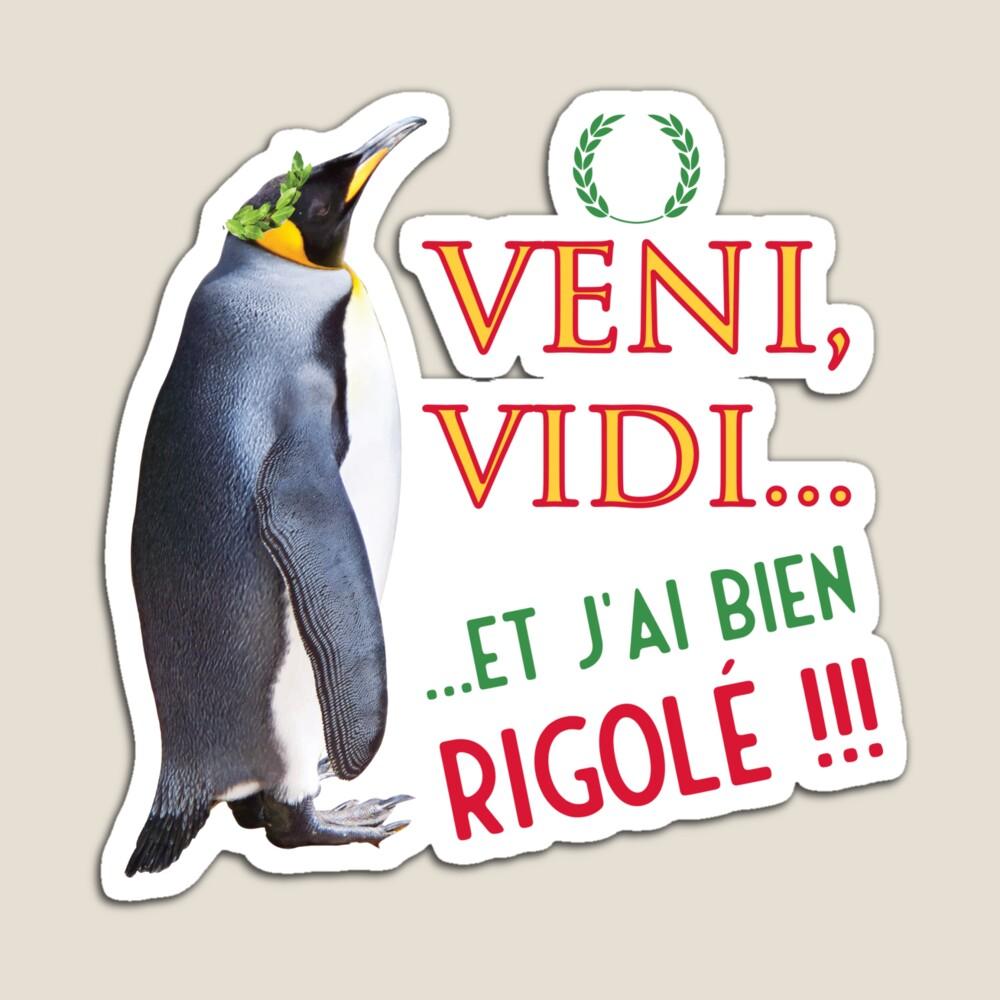 Read more about the article Magnet «Veni, vidi… et j'ai bien rigolé»